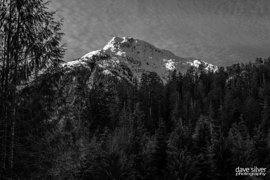 Pogo Mountain